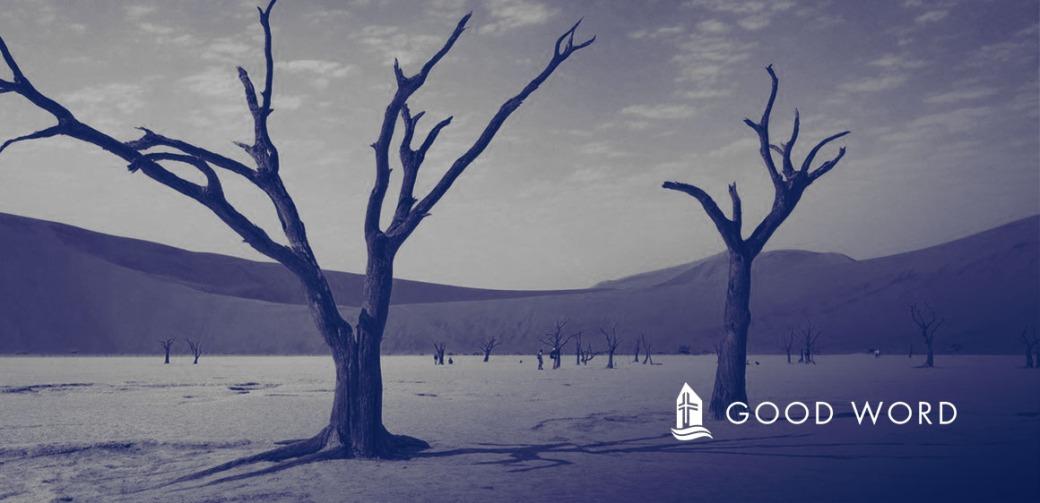 GW-2020-03-01Meta Image.jpg